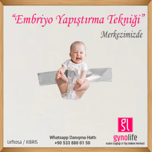Embriyo Yapıştırma tekniği - tüp bebek tedavisi - kıbrıs tüp bebek - gyno life - tüp bebek merkezi -